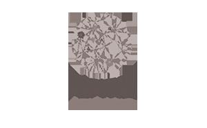 Logo Programme Pépites